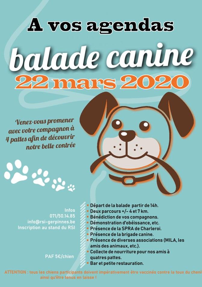Balade canine Verso 2020