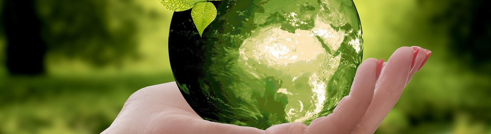 Bandeau Environnement